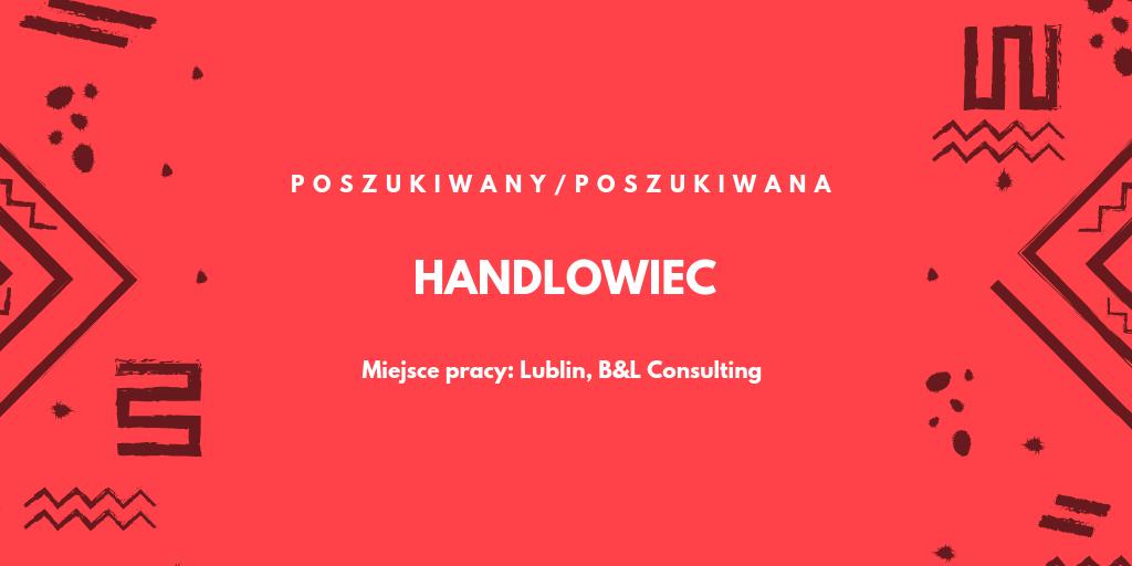 Zatrudnię ogarniętego technologicznie handlowca w Lublinie – B&L Consulting